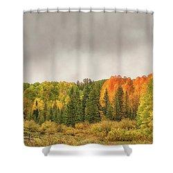 Colorado Fall Foliage 1 Shower Curtain