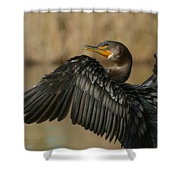 Shower Curtain featuring the photograph Drying Out by Fraida Gutovich