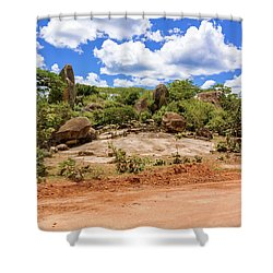 Landscape In Tanzania Shower Curtain by Marek Poplawski