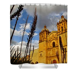 Oaxaca Mexico Shower Curtain