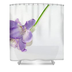 Purple Freesia Shower Curtain by Elvira Ladocki