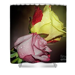 Shower Curtain featuring the photograph Roses by Elvira Ladocki