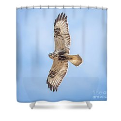 Shower Curtain featuring the photograph Rough-legged Hawk by Ricky L Jones