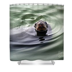 San Francisco, California Shower Curtain