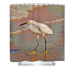 Shower Curtain featuring the photograph 6- Snowy Egret by Joseph Keane