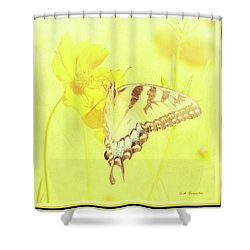 Tiger Swallowtail Butterfly On Cosmos Flower Shower Curtain