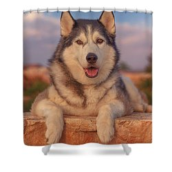 Timber Shower Curtain