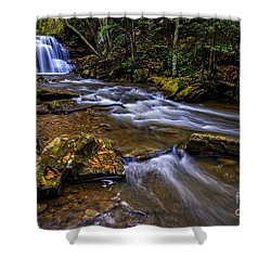 Upper Falls Holly River Shower Curtain by Thomas R Fletcher