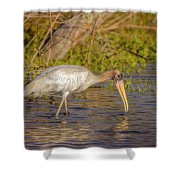 Shower Curtain featuring the photograph Wood Stork by Peter Lakomy