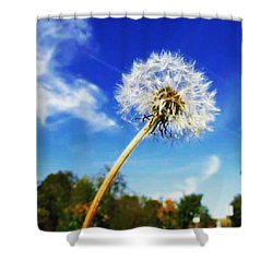 A  Fragile Flower On A Sunny Day Shower Curtain