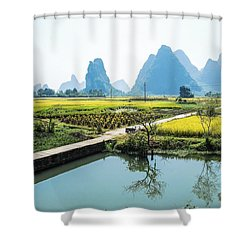 Rice Fields Scenery In Autumn Shower Curtain