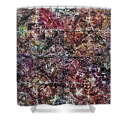 64-offspring While I Was On The Path To Perfection 64 Shower Curtain