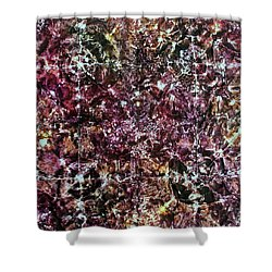 67-offspring While I Was On The Path To Perfection 67 Shower Curtain