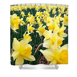 Angeline's Garden  Shower Curtain