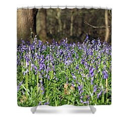 Bluebells At Banstead Wood Surrey Uk Shower Curtain