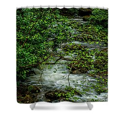 Shower Curtain featuring the photograph Kens Creek Cranberry Wilderness by Thomas R Fletcher