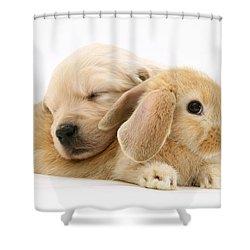 Rabbit And Puppy Shower Curtain by Jane Burton