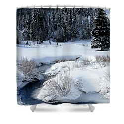 Wasatch Mountains In Winter Shower Curtain