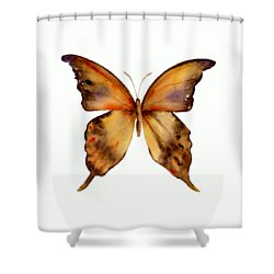 7 Yellow Gorgon Butterfly Shower Curtain by Amy Kirkpatrick