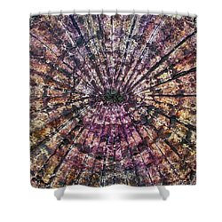 71-offspring While I Was On The Path To Perfection 71 Shower Curtain