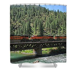 7215 Shower Curtain by Donna Kennedy