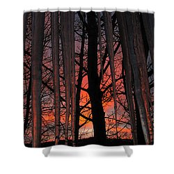 737am Shower Curtain by Janice Westerberg