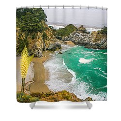 #7842 - Big Sur, California Shower Curtain
