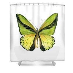 8 Goliath Birdwing Butterfly Shower Curtain