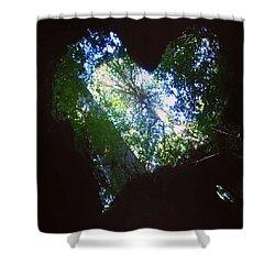 Maruyama Rice Terraces, Mie Shower Curtain