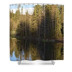 Shadow Reflection Kiddie Pond Divide Co Shower Curtain
