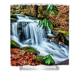 Shower Curtain featuring the photograph Little Laurel Branch by Thomas R Fletcher