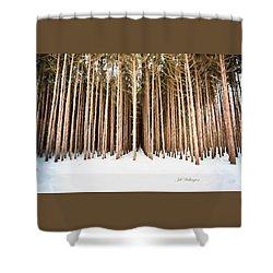 Michigan Winter Shower Curtain