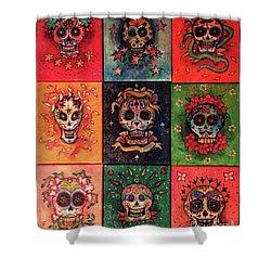 9 Skulls Shower Curtain by Dori Hartley