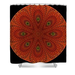 952 Shower Curtain