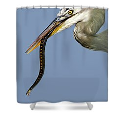 A Bad Snake Day Shower Curtain