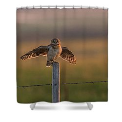 A Balancing Act Shower Curtain