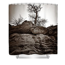 A Barren Perch - Sepia Shower Curtain by Christopher Holmes