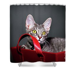 A Basket Full Of Surprises Shower Curtain