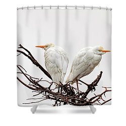 A Basket Of Anger Shower Curtain by Cyndy Doty
