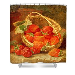A Basket Of Strawberries On A Stone Ledge Shower Curtain by Eloise Harriet Stannard