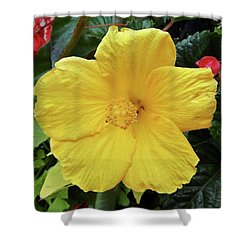 A Beautiful Flower Shower Curtain by Vickie G Buccini