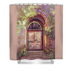 A Beautiful Mystery Shower Curtain by Lois Bryan
