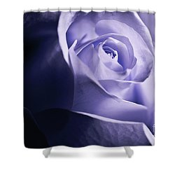 Shower Curtain featuring the photograph A Beautiful Purple Rose by Micah May