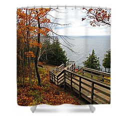 Shower Curtain featuring the photograph A Beautiful Walk by Greta Larson Photography