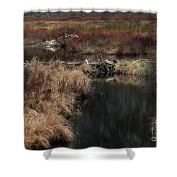 A Beaver's Work Shower Curtain by Skip Willits