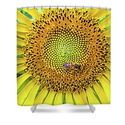 A Bee On A Sunflower Shower Curtain
