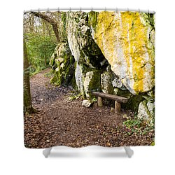 A Bench In The Woods Shower Curtain by Rae Tucker