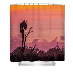 A Birdie Morning Shower Curtain