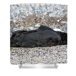 A Birds Eye View Of   The End Shower Curtain