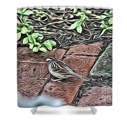 A Birds Life Shower Curtain